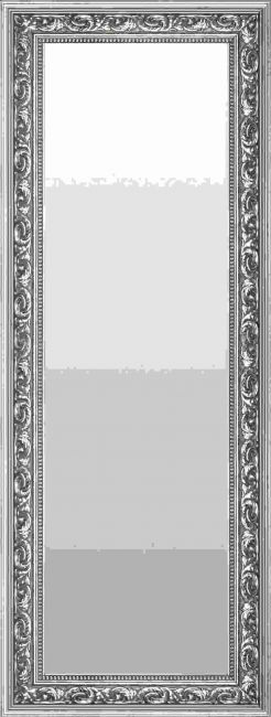 Zilveren Barok Spiegel 68x108 cm - Fee