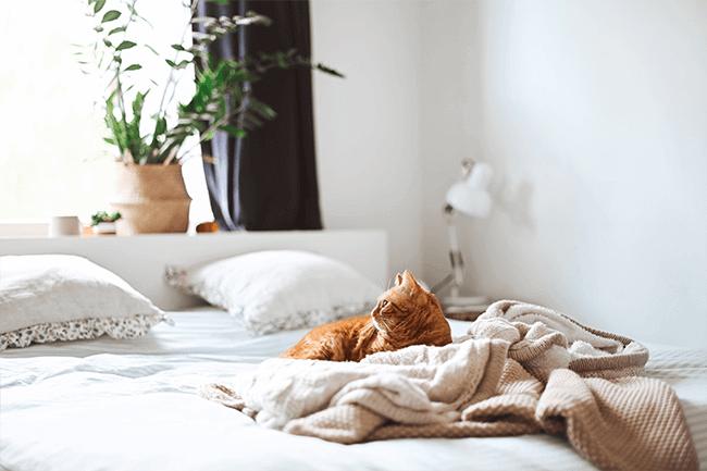 Waarvoor gebruik je een matrastopper van 140x200 centimeter?